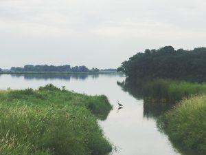Lake Titlow